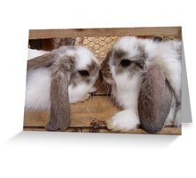 Little Bunnies Greeting Card