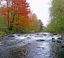 Yamaska River by marchello