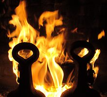 Rising Phoenix by lorib