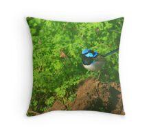 blue wren.. Throw Pillow