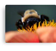 Bee's Eye View Canvas Print
