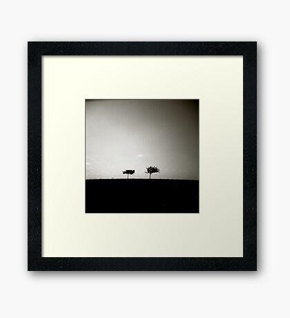 two II Framed Print