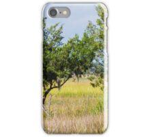 Snowy Egret Over Marsh iPhone Case/Skin