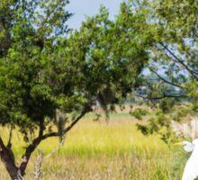 Snowy Egret Over Marsh Sticker