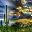 Monsoon Sunset by Terry Temple