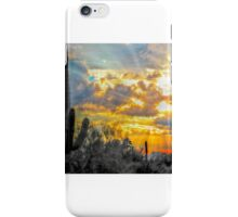 A Special Sunset Moment iPhone Case/Skin
