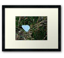A Holly Blue Framed Print