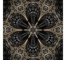 Apollonian Flower Photographic Print