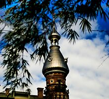 University of Tampa HDR 2 by MKWhite