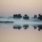 Fog by paintin4him