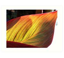 Canvas Leaf Art Print