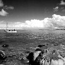 The Boat Trip by Mark Bateman
