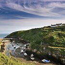 Porth Clais by Lucy Hollis