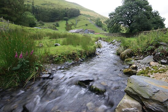 Welsh Stream by Lucy Hollis