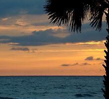 Beautiful evening by Sandy Keeton