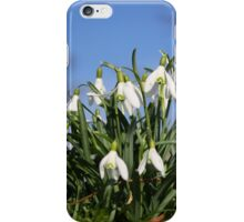 Snowdrops iPhone Case/Skin