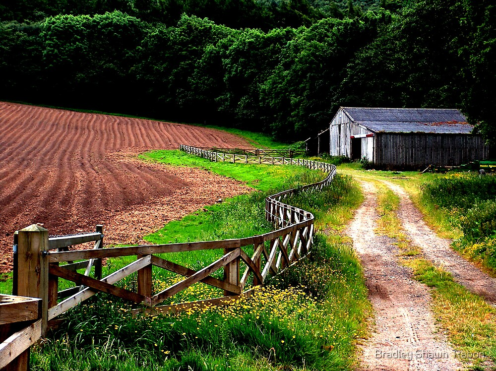 """Fence lines, Farms, and Furrows""   by Bradley Shawn  Rabon"