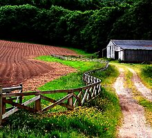 """Fence lines, Farms, and Furrows""   by Bradley Shawn  Rabon"