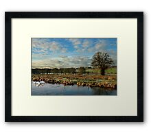 River Itchin, Nr. Compton Lock - Framed Print