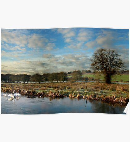 River Itchin, Nr. Compton Lock - Poster