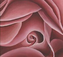 Pink Rose Print by cathy savels