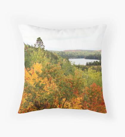 Algonquin Park Throw Pillow