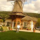 THE WINDMILL IN SUMNER by MsLiz