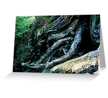 Rooted 10 Greeting Card