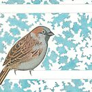 Sparrow by John Grundeken