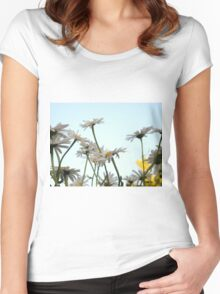 Summer Chamomiles 3 Women's Fitted Scoop T-Shirt