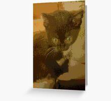 kitten calander Greeting Card