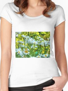Summer Chamomiles 8 Women's Fitted Scoop T-Shirt