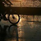 Reflections on a boardwalk by JudyBJ
