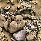 A Heart in Stone by Larry Lingard/Davis