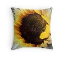 Colour me Beautiful Throw Pillow