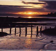 SUNSET AT BELFAIR by MsLiz