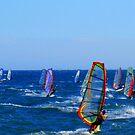 Windsurfers by Honor Kyne