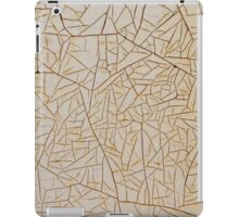 Paint of Ages - Rustic Pattern Backgrounds iPad Case/Skin