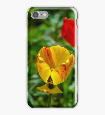 Springtime In Alaska iPhone Case/Skin