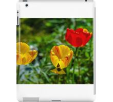 Springtime In Alaska iPad Case/Skin