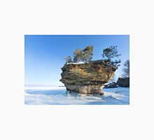Turnip Rock in Winter - Port Austin Michigan Unisex T-Shirt