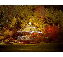 Gazebo in the Forest Photographic Print
