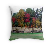 Fenced in Colours Throw Pillow