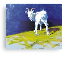 Strike A Pose - Amusing Acrylic Goat Painting Canvas Print
