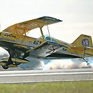 Low Flyer by Barrie Collins