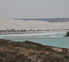 Looking left at the Head of the Bight. by elphonline