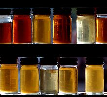 Specimens by Stephen Maxwell
