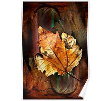 Leaf matters Poster