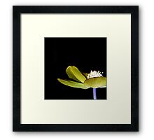 Stage Fright Framed Print