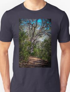 Walk Among the Big Trees T-Shirt